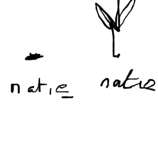 Pics - doodle - Natie Branding Agency