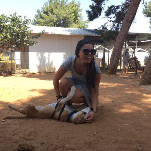 Pics - volunteering for the animals - Natie Branding Agency