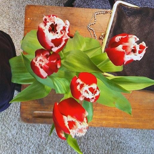 Pics - flowers-at-natie - Natie Branding Agency