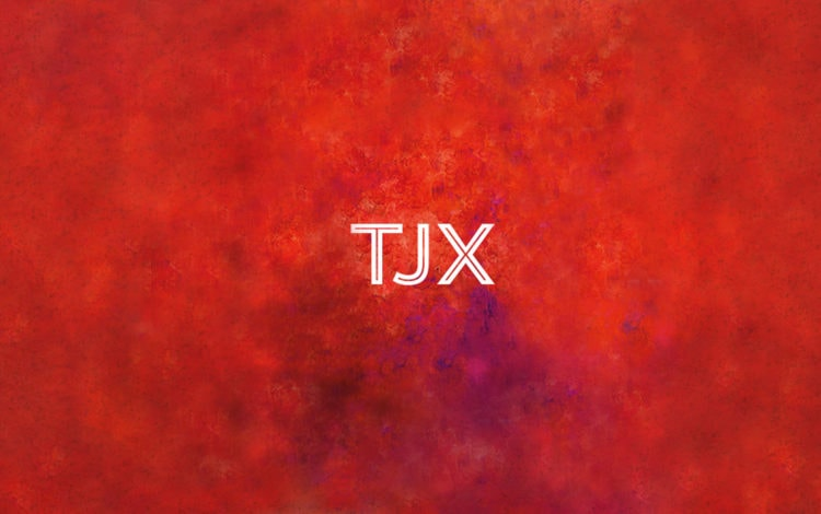 Animation - TJX - Natie Branding Agency