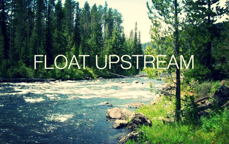 Blog - Float upstream - Natie Branding Agency